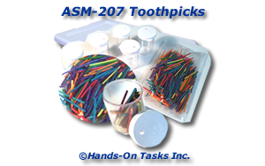 Toothpick Holder Assembly Activity