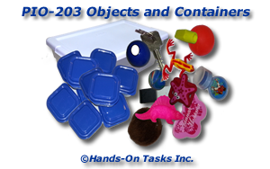 Objects and Containers Put-In Activity